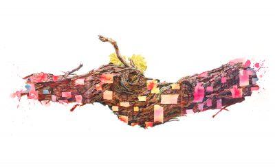 'Ad Arte': etichette d'autore per il Lambrusco di Castelvetro