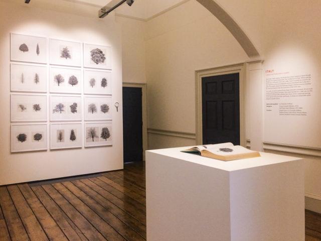 """""""L'Architettura degli Alberi"""". Il Padiglione Italia alla London Design Biennale"""