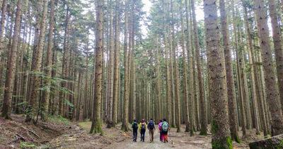 Lunaria: cammini e leggende oltre i 600 metri s.l.m.