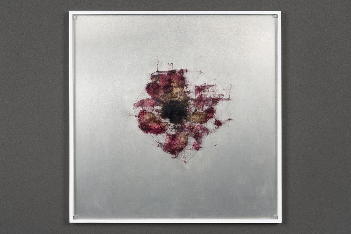Ryoichi Kurokawa, elementum #4, 2018 Tecnica mista (stampa digitale, fiori pressati, alluminio, vetro), 12 x 260 x 260 mm © L'artista. Courtesy Takuro Someya Contemporary Art