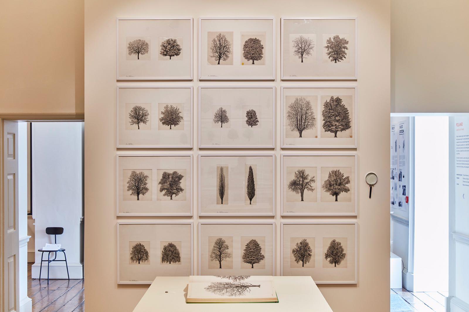 Photo credit: Ed Reeve (London Design Biennale)