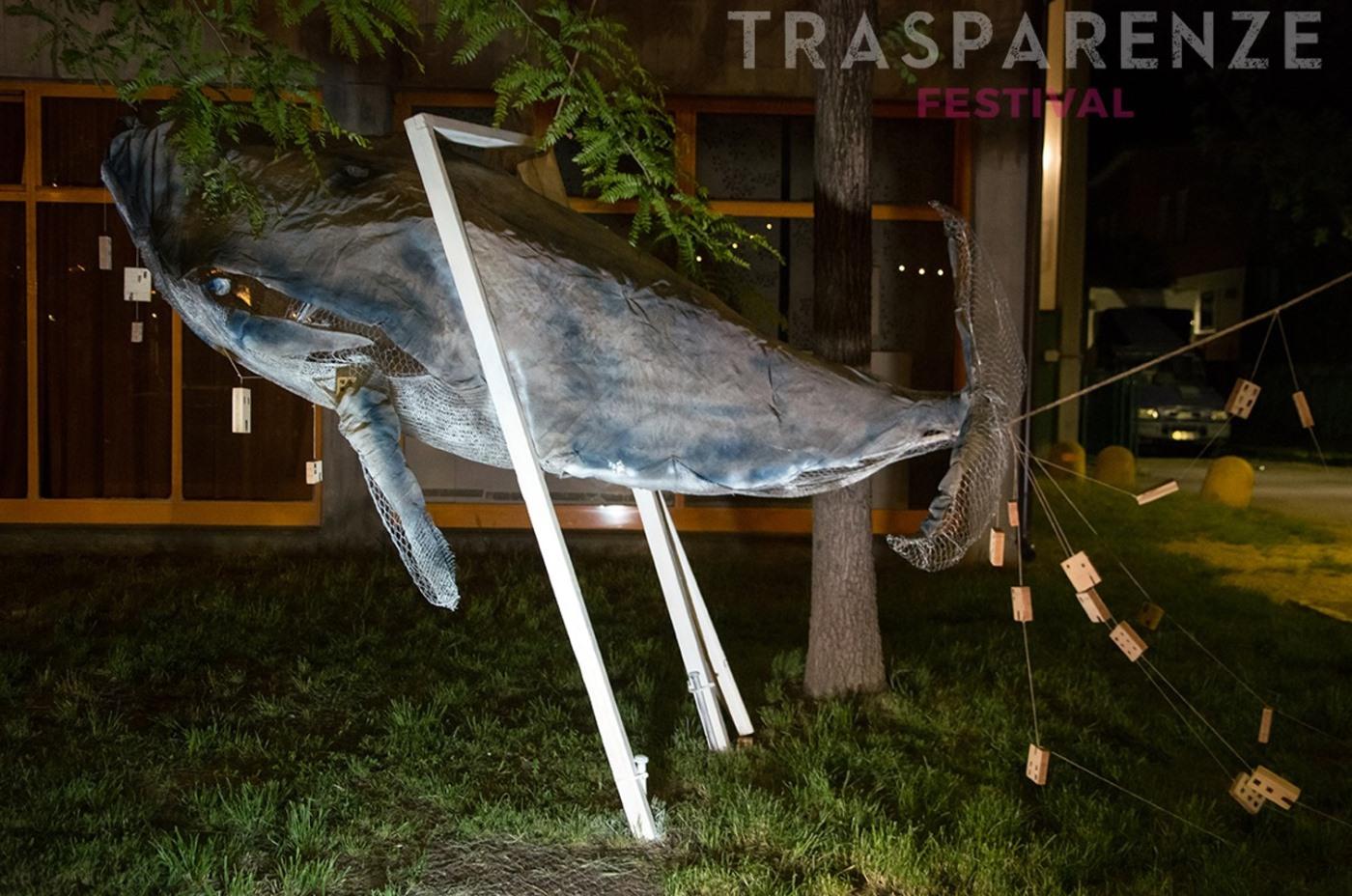 2019, Balena. Fotografia di Chiara Ferrin Trasparenze Festival MoCu Modena Cultura