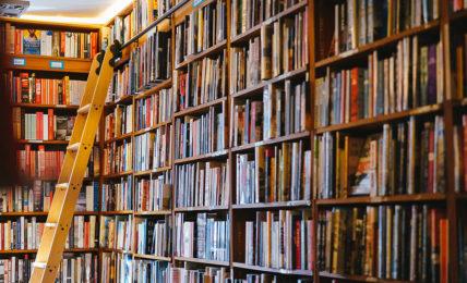 mocu modena cultura biblioteche marco ferrero