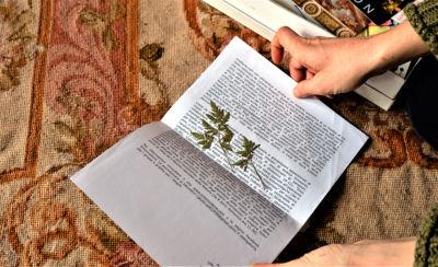 elisa de benedetti book trip mocu modena cultura